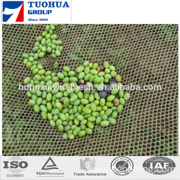 best price Olive Harvest Netting