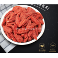 Hong Rising Conventional Goji Berry