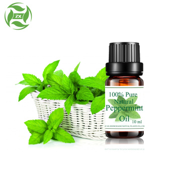 Wholesale 100% pure Peppermint oil