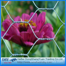Hexagonal chicken wire mesh fence