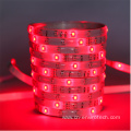 Bluetooth mesh light strip