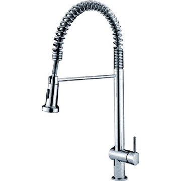 Single Lever Kitchen Spring Flexiable Spray Faucet