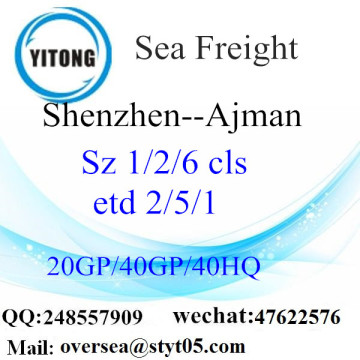Shenzhen Port Sea Freight Shipping To Ajmen