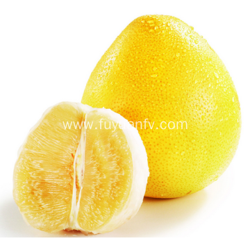 Honey pomelo from new season