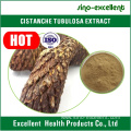 Cistanche Extract Acteoside powder