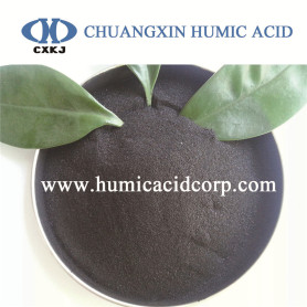Potassium humate powder K-humate organic fertilizer