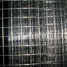 "2"" Aperture Galvanized Welded Wire Mesh"