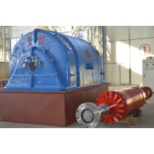 ODM for Steam Turbine Generator QNP Industrial Generators supply to Wallis And Futuna Islands Importers