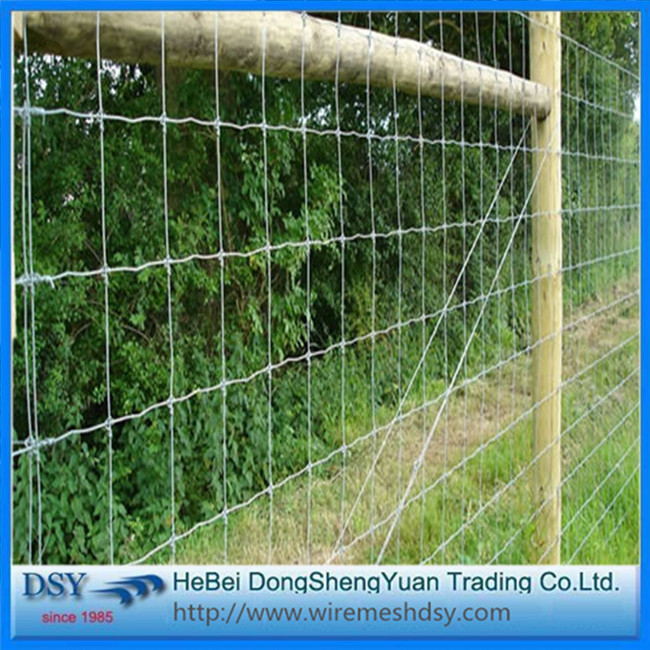 Security and strong livestock cattle farm fence