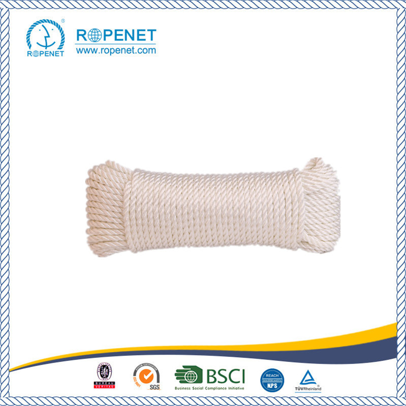 Polypropylene twisted rope with competitive price