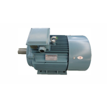 Motor for Rice Mill