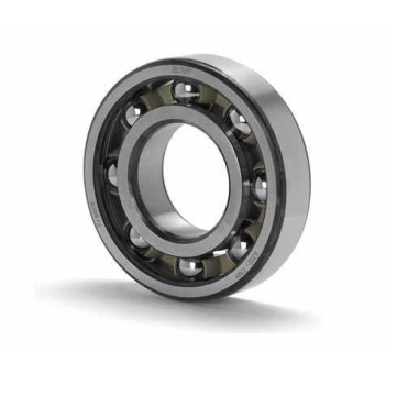 Single Row Deep Groove Ball Bearing (61844)