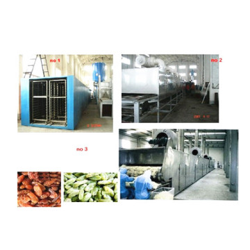 Vegetable Slices Drying Machine