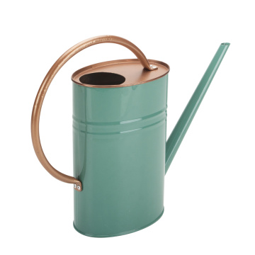 Unique Green Watering Can Small Indoor