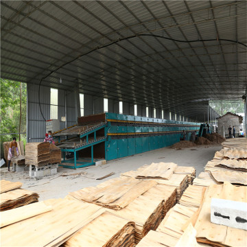 High Efficiency Lowest Drying Cost Biomass Veneer Dryer