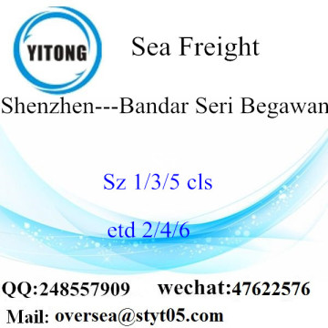 Shenzhen Port LCL Consolidation To Bandar Seri Begawan
