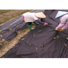 Agriculture Plants Protect 100%PP Weed Covers Fabric
