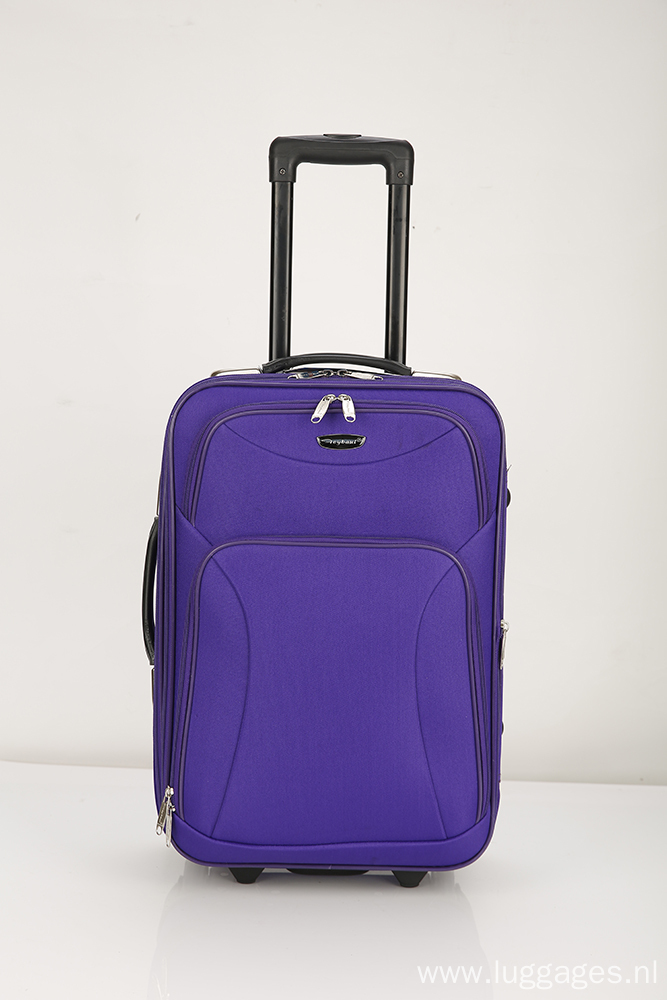 Spinner purple Suitcase Luggage