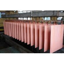 Personlized Products for Copper Content Enameled Copper Pure Copper Sheet (T2) supply to Namibia Manufacturer