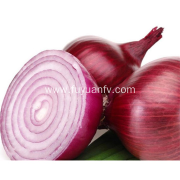 Fresh onion from weifang