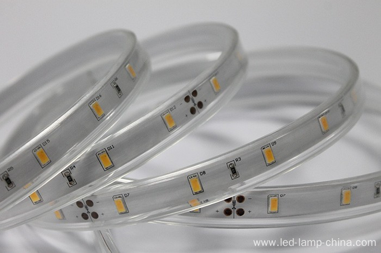 3 years warranty 5630 led strip