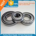 6005-2RS 6005-ZZ Radial Ball Bearing