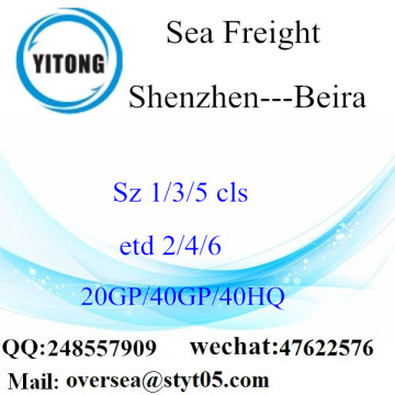 Shenzhen Port Sea Freight Shipping To Beira