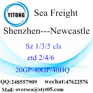 Shenzhen Port Sea Freight Shipping To Newcastle