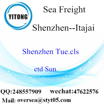 Shenzhen Port LCL Consolidation To Itajai