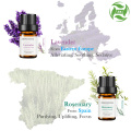 100% Pure Basic Essential Oil Gift Set 10ml