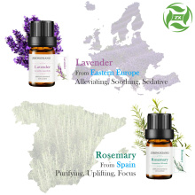 Aromatherapy therapeutic grade pure essential oil set