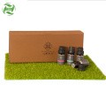smoothing lock water skin essential oil set
