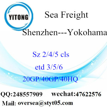 Shenzhen Port Sea Freight Shipping To Yokohama