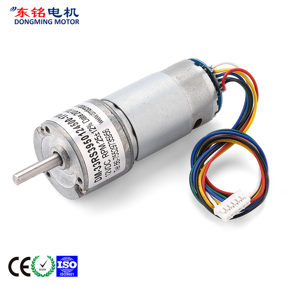 geared motor dc 24v