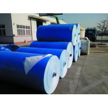 Hot Sale for Blue Poly Tarpaulin Hot selling blue PE tarpaulin in roll export to Poland Exporter