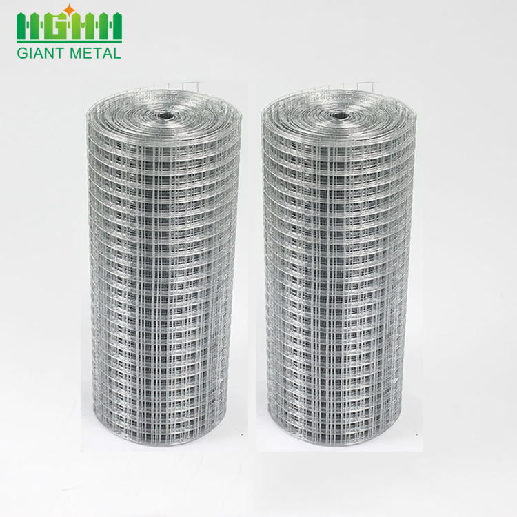 Bird Cage Galvanized Welded Wire Mesh Roll