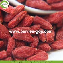 Factory Supply Wholesale Diet Eu Standard Goji Berry