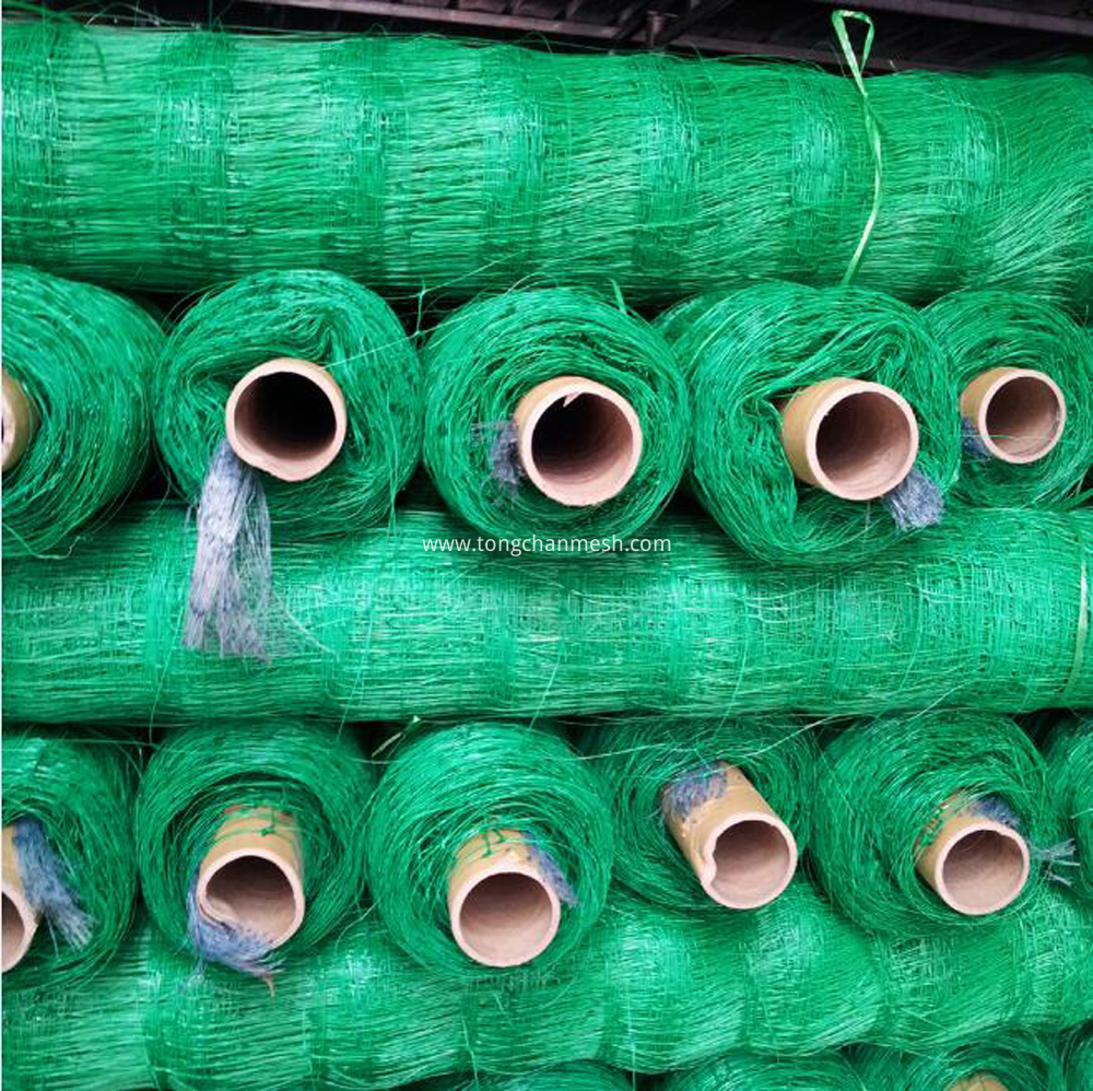 Green Color Big Rolls