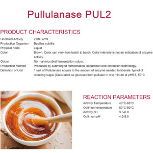 Pullulanase for alcohol industry