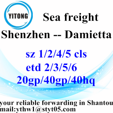 Shenzhen International Freight Forwarder Shipping to Damietta