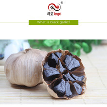 Purchasing for Multi Bulb Black Garlic High quality whole black garlic supply to Oman Manufacturer