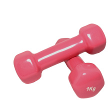 Personlized Products for Vinyl Dumbbells,Vinyl Coated Dumbbell,Vinyl Hex Dumbbell Manufacturer in China 1 KG Vinyl Dumbbell supply to Marshall Islands Supplier