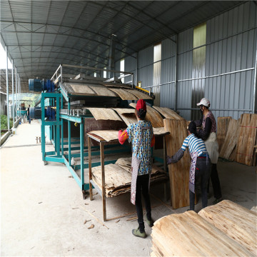Operating System Shine Roller Veneer Dryer