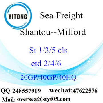 Shantou Port Sea Freight Shipping To Milford