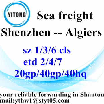 Shenzhen Sea Freight Forwarder Agent to Algiers