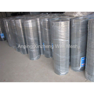 Hot Dipped Hardware Mesh