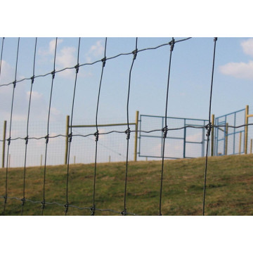 Hinge Joint Farm Guard Field Fence cheap price