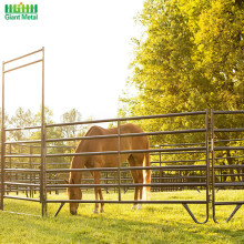Galvanized Used Livestock Horse Fence Panels