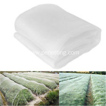 Agriculture Virgin HDPE Monofilament Anti Insect Net