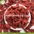 Anti Tumor Nutrition Fruit Healthy Conventional Goji Berry